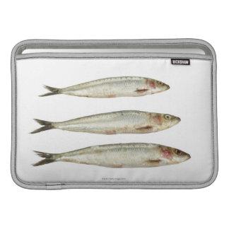 Sardines (Pilchards) 2 Sleeve For MacBook Air