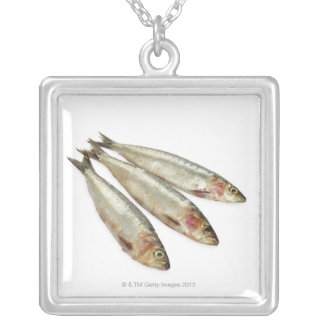Sardines (Pilchards) Silver Plated Necklace