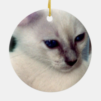 Sasha Kitten Ornament
