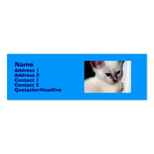 Sasha Kitten Profile Card Business Card