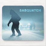 Sasquatch Encounter