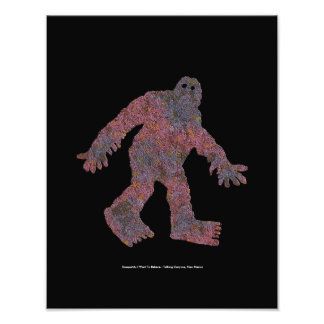 Sasquatch, I Want To Believe Photograph