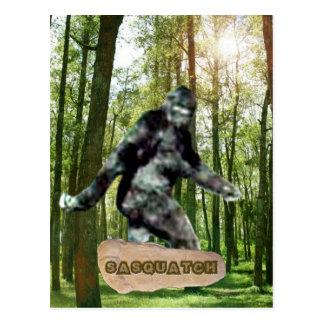 Sasquatch Postcards