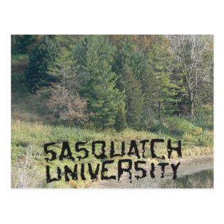 Sasquatch University - Multiple Products Postcard
