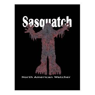 Sasquatch Watcher Postcard