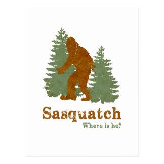 Sasquatch... Where is he? Postcard