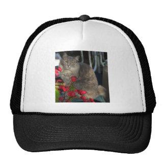 Sassy and begonias v2 cap