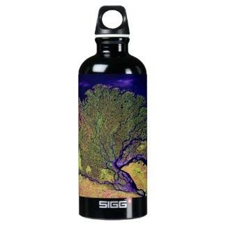 Satellite Image - Nile Delta from Space SIGG Traveller 0.6L Water Bottle
