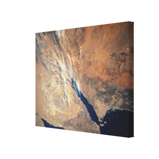 Satellite Image of Land Gallery Wrap Canvas