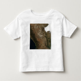 Satellite view of the landscape of central Mexi Toddler T-Shirt