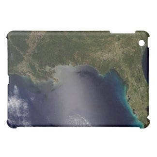 Satellite view of the Southeastern United State 2 Case For The iPad Mini