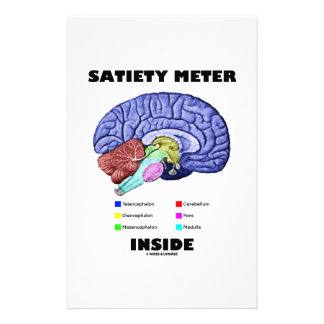 Satiety Meter Inside Anatomical Brain Humor Personalized Stationery