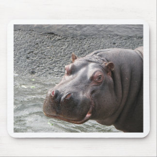 Saucy Hippo! Mouse Mat