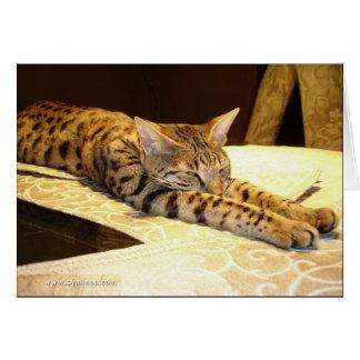 Savannah cat sleepy Card