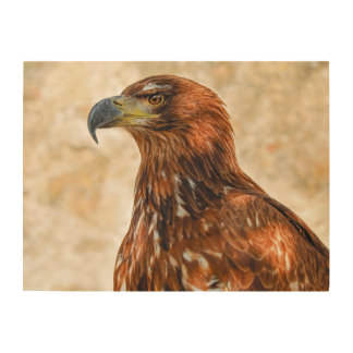 Savannah eagle wood wall art
