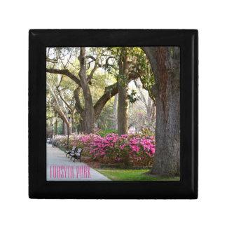 Savannah Georgia Forsyth Park | Azaleas in Spring Small Square Gift Box