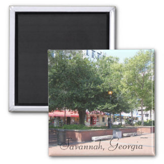 Savannah, Georgia Magnet