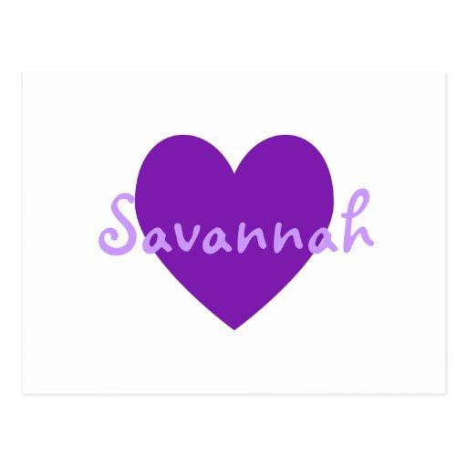 Savannah in Purple Post Cards