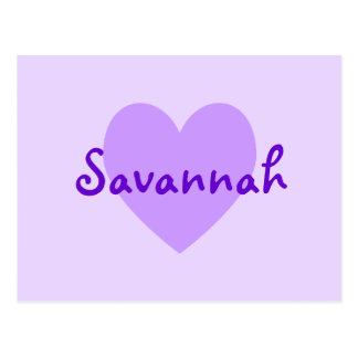 Savannah in Purple Postcard