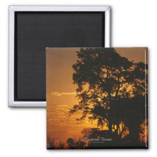 Savannah Sunset Magnet