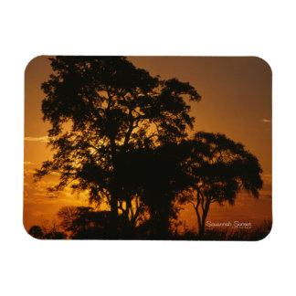 Savannah Sunset Photo Magnet