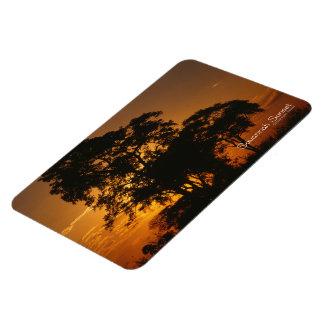 Savannah Sunset Rectangular Photo Magnet