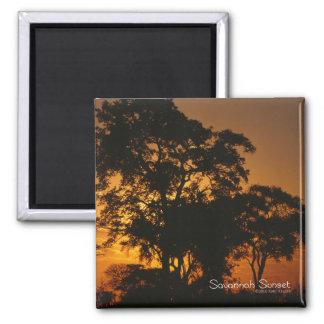 Savannah Sunset Square Magnet