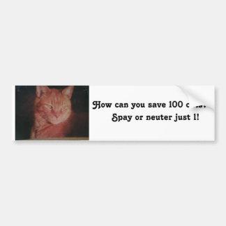 Save 100 cats bumpersticker bumper sticker