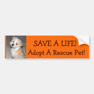 SAVE A LIFE!, Adopt A Rescue .Pet!.. Bumper Sticker