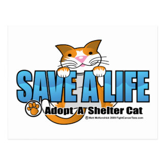 Save A Life: Adopt A Shelter Cat Post Card