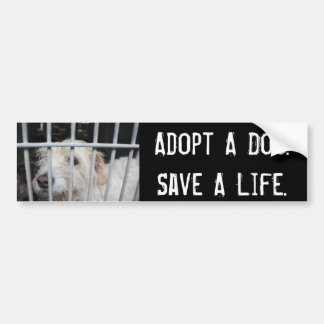 Save A Life Bumper Stickers