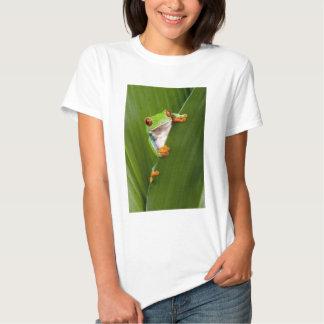 Save eyed tree frog shirts