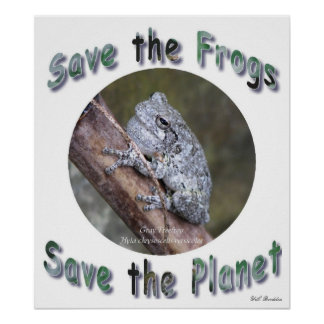 Save Gray Treefrogs Poster