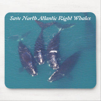 Save North Atlantic Right Whales by RoseWrites Mouse Mat