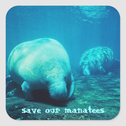 Save Our Manatees Stickers
