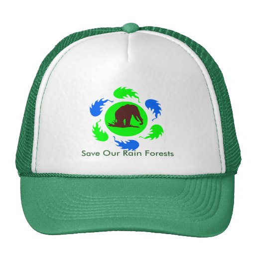save our forests essay Free essay: by: lillian richard hemp to save our trees worldwide we are seeing a devastation of our forests due to paper production consumption of wood.