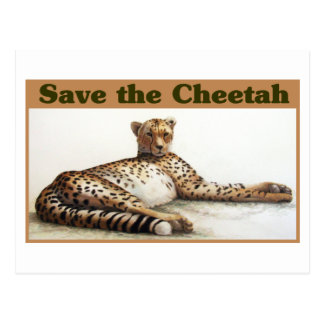 Save the Cheetah Postcard