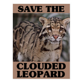 Save the Clouded Leopard Postcard