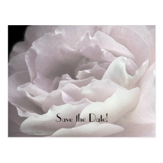 Save the Date 65th Birthday Celebration Postcard