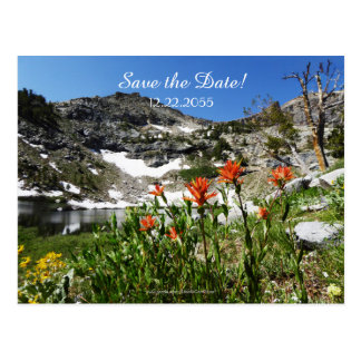 Save the Date 70th Anniversary Announcement Postcard