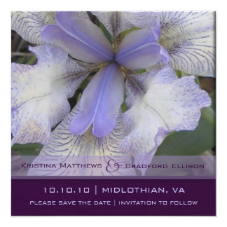 Save the Date Blue Iris 5x5 Card