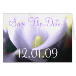 Save the Date Cala Lily - Lavender Greeting Card