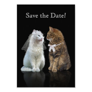 Save the Date for Cat Lovers 9 Cm X 13 Cm Invitation Card