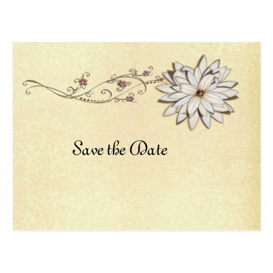 Save the Date for Special Occasion Postcard