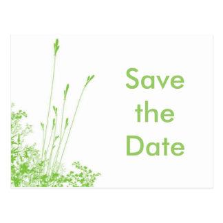 Save the Date  Green grass Postcard
