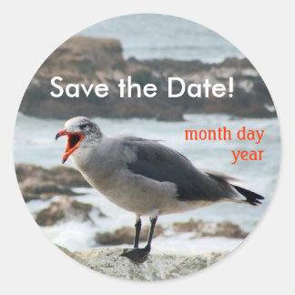 Save the Date Gull Sticker