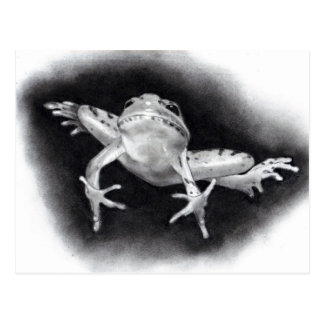 SAVE THE DATE: JUMPING FOR JOY: FROG IN PENCIL POSTCARD