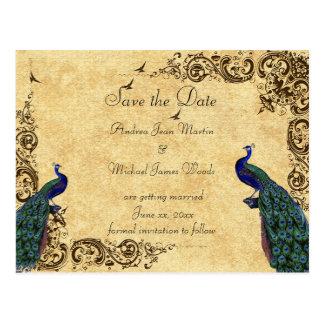 Save the Date Peacocks Post Card Postcard