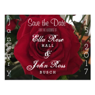 Save the Date Rose Postcard