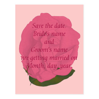 Save the date wedding postcards, pink rose postcard
